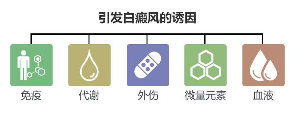 赣州中研白癜风的病发原因有哪些?